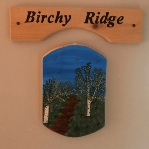 Birchy Ridge Room